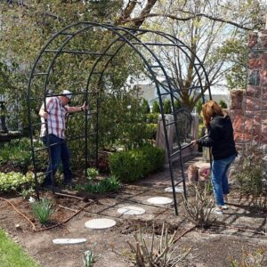 A Project Gone Awry 🥴 & Transplanting a Venus Dogwood! 🌳 // Garden Answer