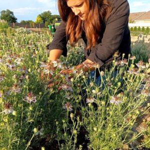 New Garden Stuff + Seed Unboxing + Flower Arrangement! 🥰🌿💚 // Garden Answer