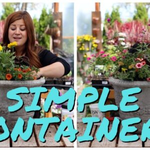 Flower Alley Experiment: Simple Container Ideas for Full Sun! ☀�🌿🙌// Garden Answer