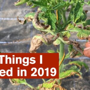 13+2 Things I Learned In 2019