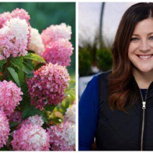 16 Hardy Hydrangea Varieties 🌿💜// Garden Answer