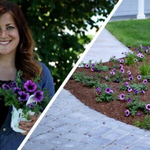 5 Tips When Adding Color To Your Landscape!