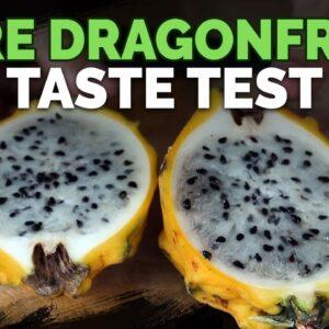 6 Rare Dragonfruit Varieties Taste Test!