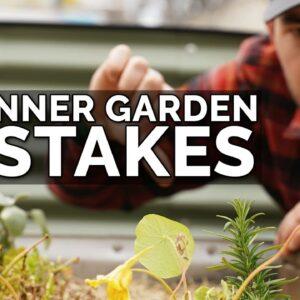 9 Beginner Gardening Mistakes to Avoid 😱 ❌
