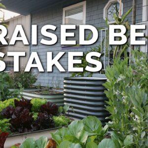 9 Beginner Raised Bed Garden Mistakes to Avoid