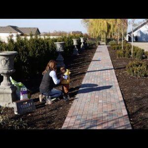 Planting MORE Bulbs! 😆🙌🤷♀️// Garden Answer