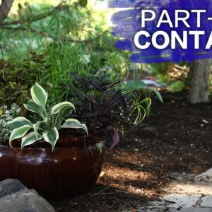 A Container Garden for your Landscape