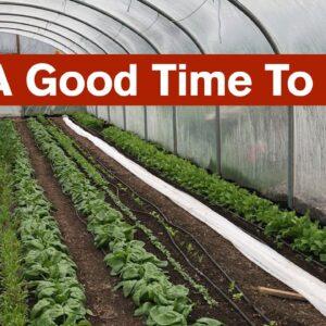 A Good Time To Grow