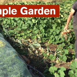 A More Resilient Simple Garden