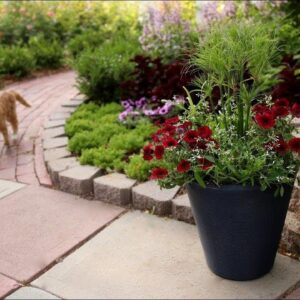 A Simple Red, White and Blue Garden Container