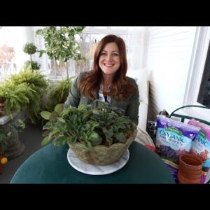 Fixing a Neglected Houseplant Arrangement & Rooting African Violets 🤦�♀�😆🌿// Garden Answer