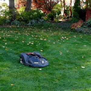 Testing an Automower! Is this the Future? 😀� // Garden Answer