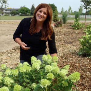 3 New Hydrangeas for 2021: Update & Planting! �💚 // Garden Answer