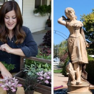 New Houseplants & Staining a Concrete Statue! 🌿🎨// Garden Answer