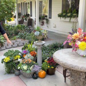 October Garden Tour! 🍁🧡🍂 // Garden Answer