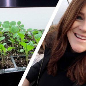 Touching Base & Checking on Seedlings! 🥰�� // Garden Answer