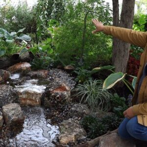 We Installed a New Water Feature and I LOVE it! 💦🙌😍 // Garden Answer