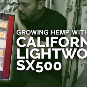 California Lightworks SolarXtreme 500 Review + Growing Hemp!