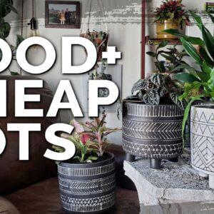 Cheap Plant Pots: HomeGoods vs. T.J.Maxx vs. DollarTree!