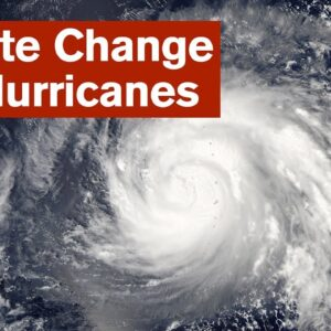 Climate Change and Hurricanes - A Grower's Perspective