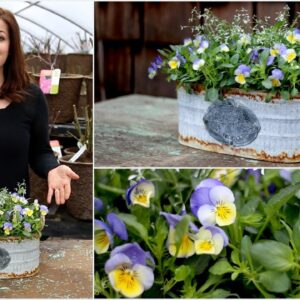 Create A Simple Spring Container
