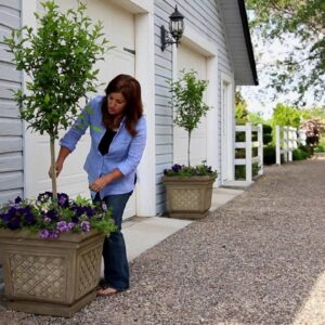Create Large Containers for A Large Area!