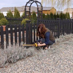 Cutting Back Lavender! 💜🌿// Garden Answer