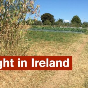 Dealing with Drought in Ireland