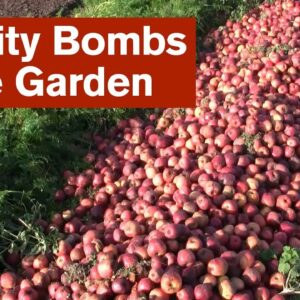 Dealing With Fertility Bombs in the Garden