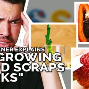 """Do """"Regrowing Food Scraps"""" Hacks Actually Work?"""