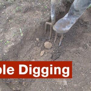 Double Digging the Intensive Garden