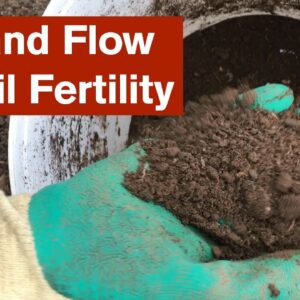 Ebb and Flow of Soil Fertility in the Polytunnel Garden