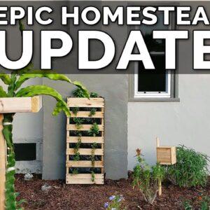 Epic Urban Homestead Tour | 1 Month Update