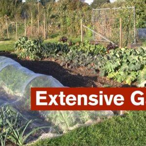 Extensive Garden Introduction