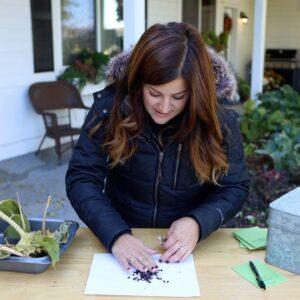 Harvesting & Saving Seeds! 🌻👩�🌾🌿// Garden Answer