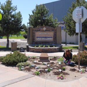 Planting Low Maintenance/High Impact Plants at Our Local Community College! 👩🎓🙌💚 // Garden Answer