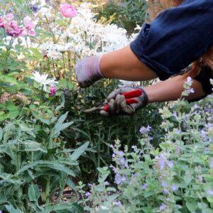 Flower Bed Cleanup! 🌿💚🥵// Garden Answer