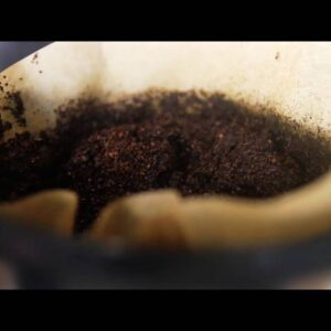 Garden Tips with P. Allen Smith--Eggshells and Coffee?