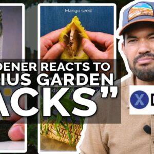 """Gardener Roasts """"13 Genius Gardening Hacks"""""""