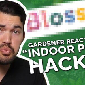 """Gardener Roasts Dumb """"Indoor Gardening Hacks"""""""
