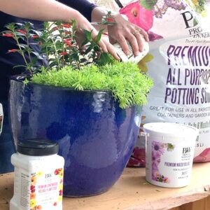 Get Ready for the Hummingbirds--With Creekside Nursery