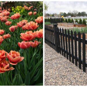 Spring Blooms & Vegetable Garden Tour! 🌸🥦😃// Garden Answer