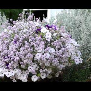 Grow A Gorgeous Fall Flower Pillow®