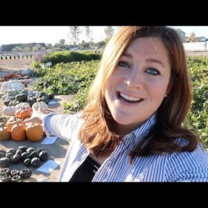 Pumpkin & Squash Harvest (& How To Tell When They're Ready to Pick)!!! 🎃🙌🧡 // Garden Answer