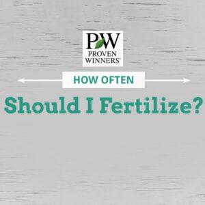 How often should I Fertilize my garden plants?