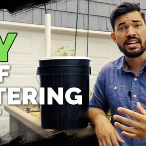 How to Build a Self Watering Pot For $10 😱