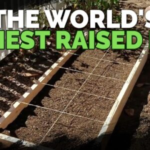 How to Build Cheap, DIY Raised Garden Beds In Under 30 Minutes
