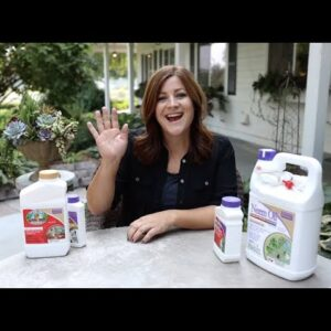How to Control Spider Mites! 🕷🌿 // Garden Answer