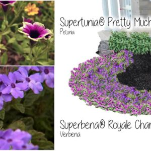 How-To Create A Landscape Area with P Allen Smith