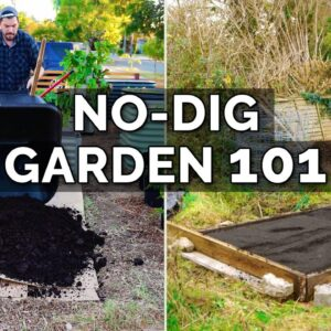 How to Make a No Dig Garden Bed With @Charles Dowding